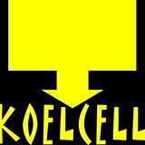 Koelcell akoestische coverband